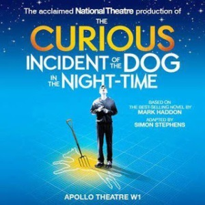 The Curious Incident of the Dog in the Night Time_Poster